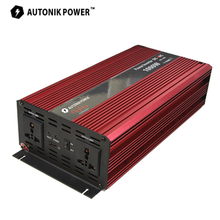 PIS 1000W Puer Sine Wave Inverter